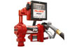 Fill-Rite 12V DC High Flow Pump with Hose, Manual Nozzle and Liter Meter